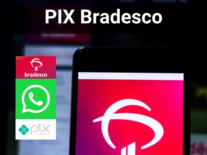 pix Banco Central Pix Bradesco